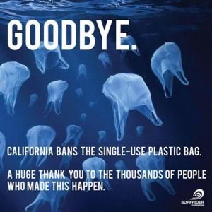 Goodbye - Bag Ban